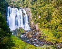 Cascada tropical imagen de archivo