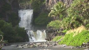 Cascada tropical de la isla Fotografía de archivo