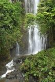 Cascada tropical de la selva tropical fotografía de archivo