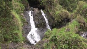 Cascada tropical de Maui almacen de video