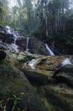 Cascada tropical hermosa de la selva tropical que cae abajo de la montaña rocosa rodeada por el bosque verde de la naturaleza Fotos de archivo