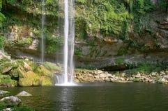 Cascada (waterval) Misol Ha Royalty-vrije Stock Foto