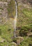 Cascada y arco iris en la isla de Flores, Azores Poco hace Bacalhau Imagen de archivo libre de regalías