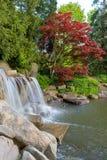 Cascada y charca en jardín del patio trasero Fotos de archivo