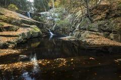 Cascada y hojas de otoño en el agua oscura, parque de Enders, Connecti Imagenes de archivo