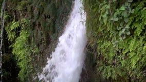 cascada y naturaleza verde almacen de metraje de vídeo