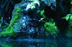 cascada y piscina Musgo-cubiertas Foto de archivo libre de regalías