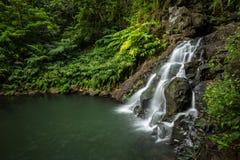 Cascada y piscina ocultadas profundamente en la selva tropical hawaiana fotografía de archivo