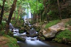Cascada y río Foto de archivo libre de regalías
