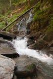 Cascada y río en bosque Imagenes de archivo