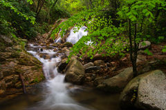 Cascada y río en primavera Fotos de archivo libres de regalías
