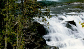 cascadas Fotografía de archivo libre de regalías
