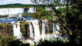 Cascadas cataratas de伊瓜苏,密西昂奈斯,阿根廷 免版税库存照片