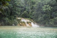 Cascadas de Cascadas de Agua Azul Agua Azul foto de archivo libre de regalías