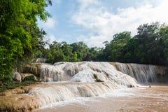 Cascadas de Agua Azul en Chiapas, México fotos de archivo