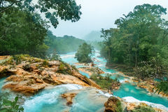 Cascadas De Agua Azul siklawy Agua Azul yucatan Meksyk Zdjęcia Stock