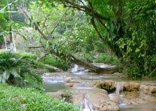 Cascadas de Agua Azul waterfall. Chiapas, Mexico royalty free stock photo