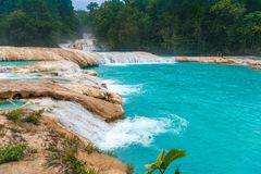 Cascadas de Agua Azul waterfalls. Agua Azul. Yucatan. Mexico. Waterfall Agua Azul, Chiapas. Located in Mexico royalty free stock photography
