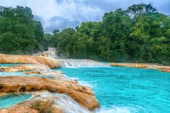 Cascadas de Agua Azul waterfalls. Agua Azul. Yucatan. Mexico. Waterfall Agua Azul, Chiapas. Located in Mexico stock photos