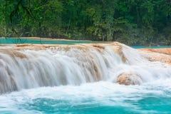 Cascadas de Agua Azul waterfalls. Agua Azul. Yucatan. Mexico. Waterfall Agua Azul, Chiapas. Located in Mexico royalty free stock image