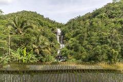 Cascadas de Curug Nangga situadas en la ciudad de Bogor, Java del oeste, Indonesia fotografía de archivo libre de regalías