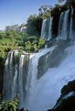 Cascadas de Iguazu, la Argentina foto de archivo