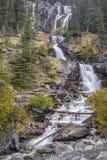 Cascadas de la cala del enredo Jasper National Park alberta canadá imagen de archivo libre de regalías