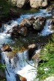 Cascadas de la montaña Fotos de archivo libres de regalías
