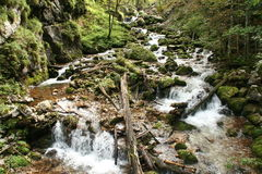 Cascadas de la montaña Fotografía de archivo