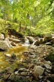 Cascadas de la región de Kamienczyk Imagen de archivo libre de regalías