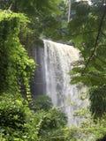 Cascadas de Wli, Ghana Fotos de archivo libres de regalías