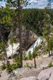 Cascadas de Yellowstone Foto de archivo