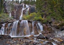 Cascadas del enredo, AB, Canadá Imagenes de archivo