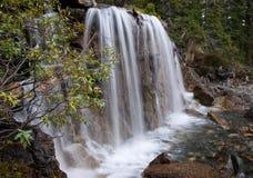 Cascadas del enredo, AB, Canadá Fotos de archivo libres de regalías