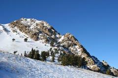 Cascadas del esquí Foto de archivo