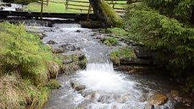 Cascadas del río puro de la montaña entre las piedras almacen de metraje de vídeo