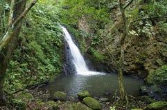 Cascadas en Baru dominical Costa Rica Fotografía de archivo libre de regalías