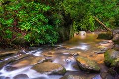 Cascadas en Carrick Creek, en el parque de estado de la roca de la tabla, villancico del sur Foto de archivo