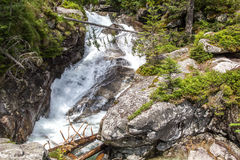 Cascadas en el potok de Studeny de la corriente en alto Tatras, Eslovaquia Imagen de archivo libre de regalías
