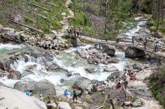 Cascadas en el potok de Studeny de la corriente en alto Tatras, Eslovaquia Foto de archivo