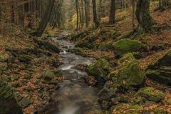 Cascadas en el río Cista en las montañas de Krkonose Foto de archivo