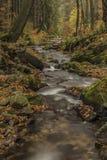 Cascadas en el río Cista en las montañas de Krkonose Imagenes de archivo