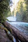 Cascadas en Oregon Fotos de archivo libres de regalías
