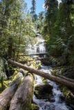 Cascadas en Oregon Fotos de archivo