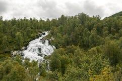 Cascadas en un bosque Fotos de archivo