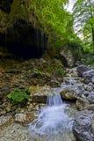 Cascadas en un bosque Italia Imagenes de archivo