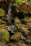 Cascadas en una corriente rocosa Foto de archivo