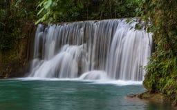 Cascadas escénicas y vegetación enorme en Jamaica Fotos de archivo libres de regalías