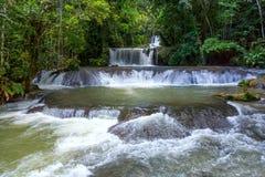 Cascadas escénicas y vegetación enorme en Jamaica fotografía de archivo