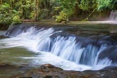 Cascadas escénicas y vegetación enorme en Jamaica imagenes de archivo